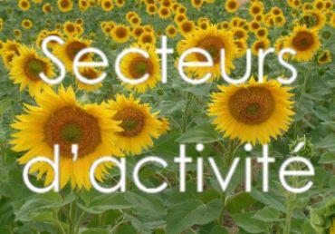secteurs activite def